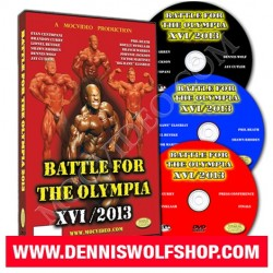 DVD - BFTO XVI / 2013